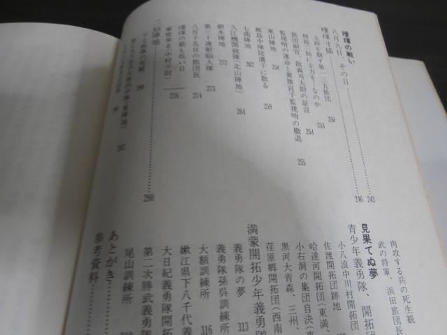 画像3: 孫呉・璦琿の戦い(昭和20年満ソ国境守備隊の戦い)